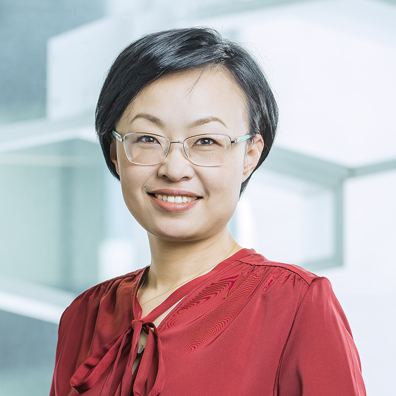 Lawyer Elaine Sun